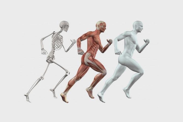 7 интересных книг о человеческом теле, здоровье и медицине