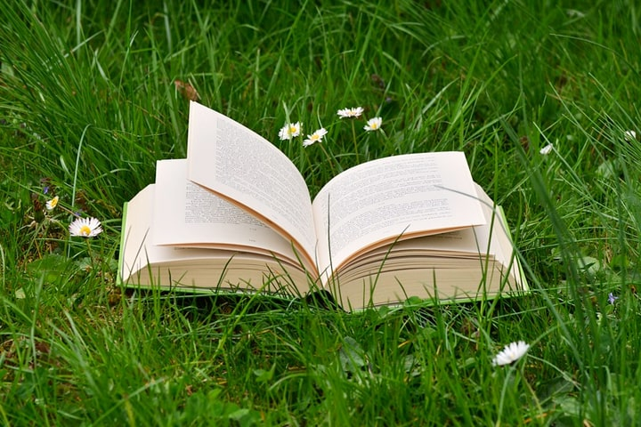 Как спасать планету, покупая тонны книг